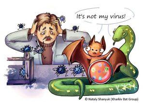 Fledermäuse und das Virus
